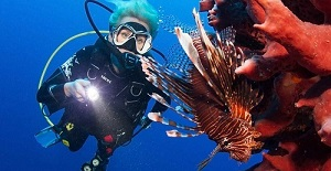 Lion Fish hunting: Safe the coral!